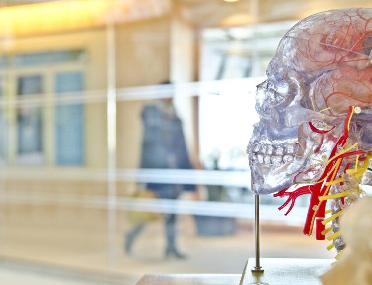 Dysphagie bei Parkinson